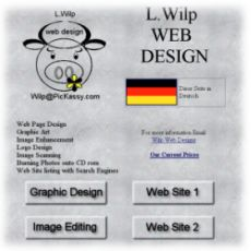 Wilp Web Designs